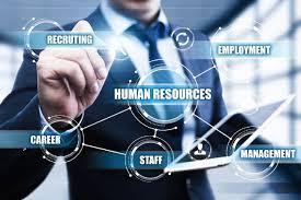 Nhà quản lý tài ba cần phải có tổng hợp nhiều kinh nghiệm trong công việc và kỹ năng mềm