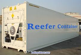 Cont lạnh được dùng để chứa hàng cần bảo quản lạnh